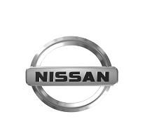 3D Logo Design Nissan